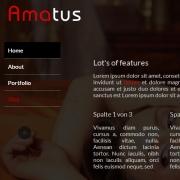Amatus