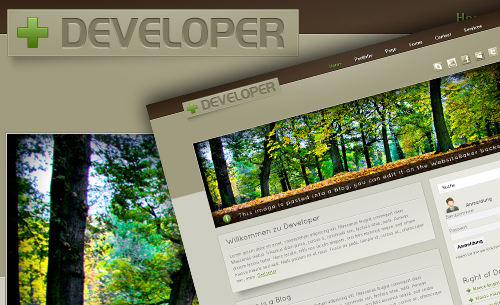 developer - Websitebaker Templates